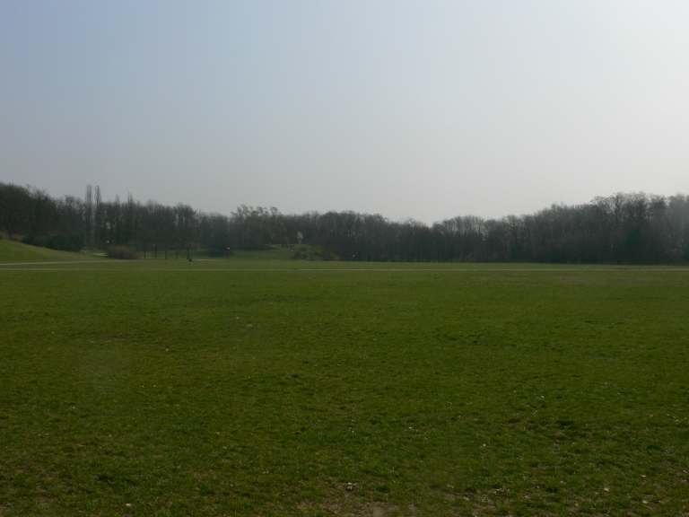 Grass field in the park.JPG